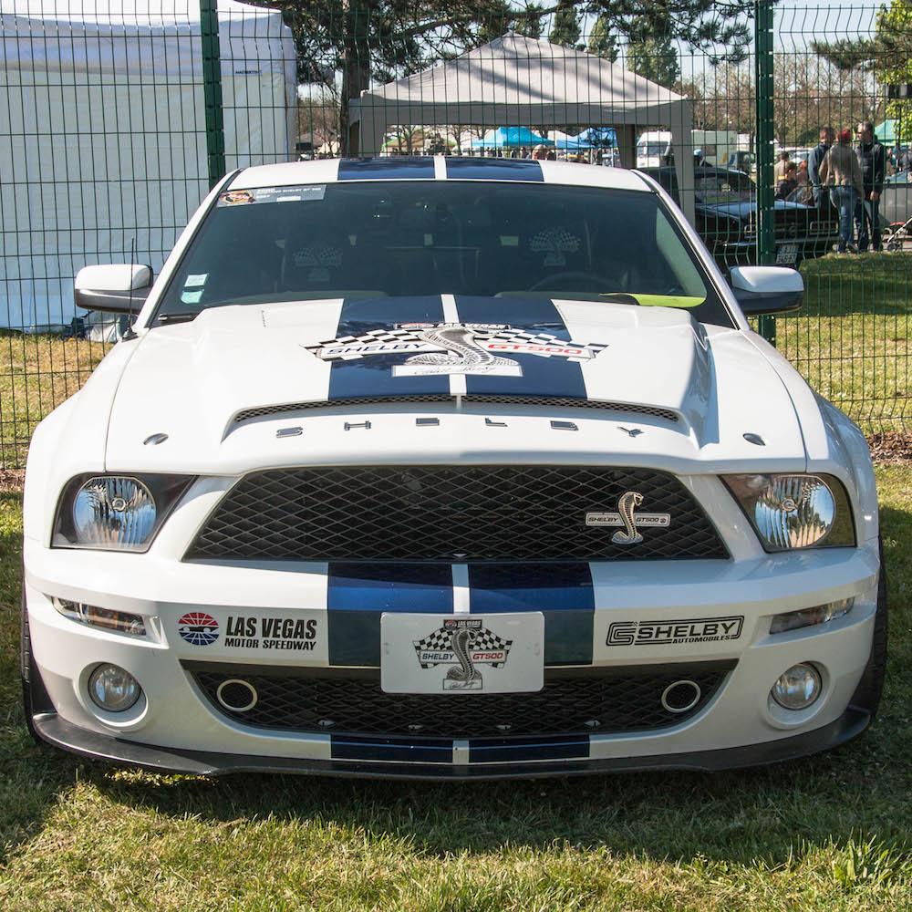 La Mustang Shelby de ShelbyStef