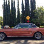 La Mustang présente bien...